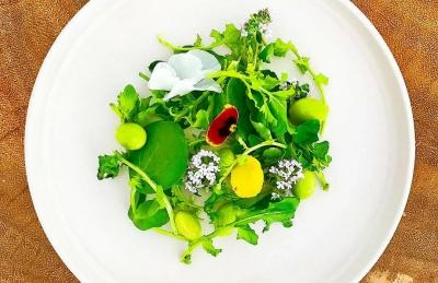 Green Dieet